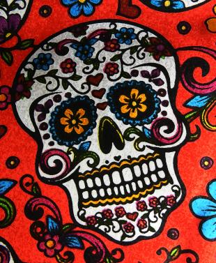 Sugar Skull on Red